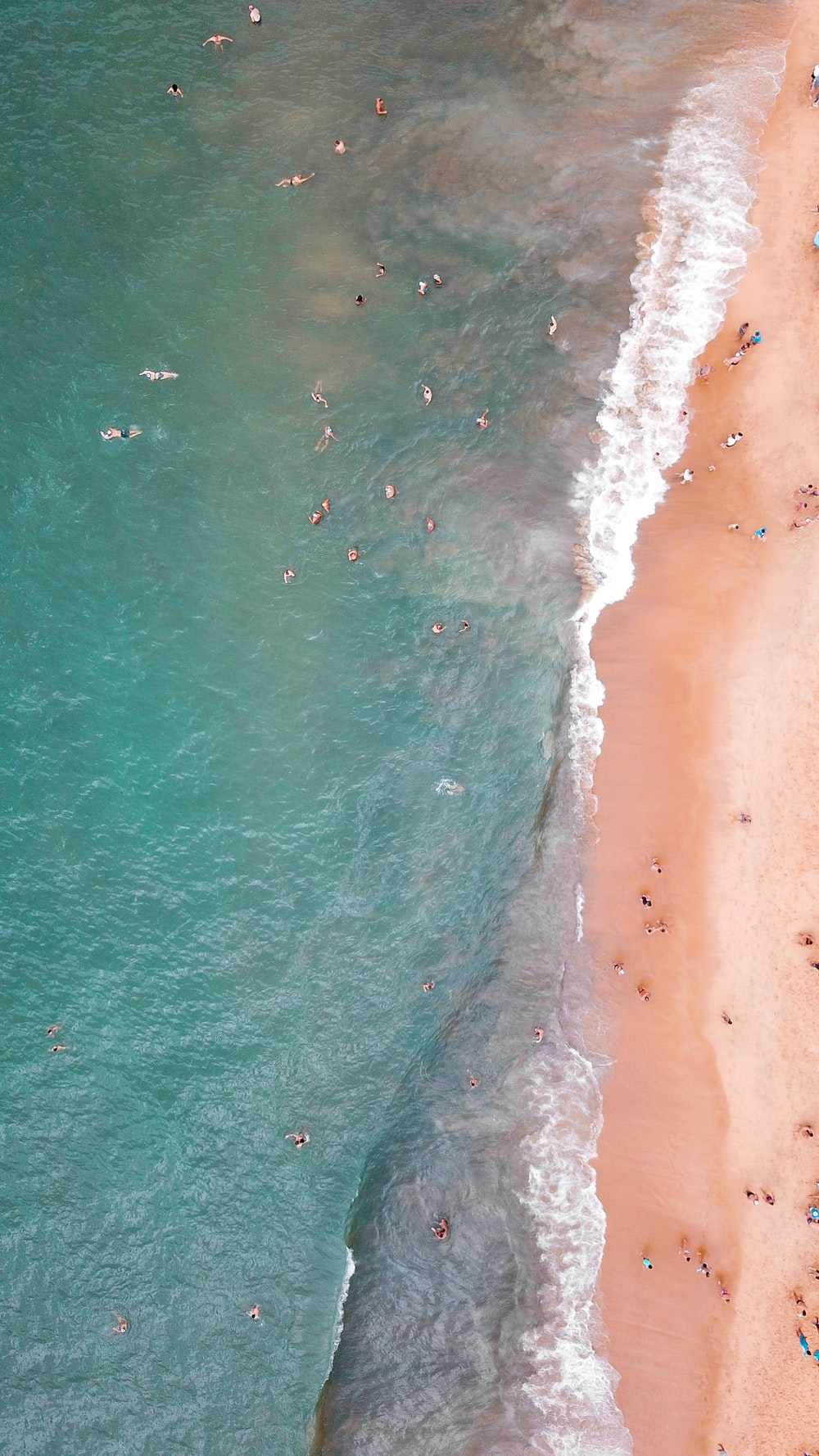 people swimming in beach during daytime