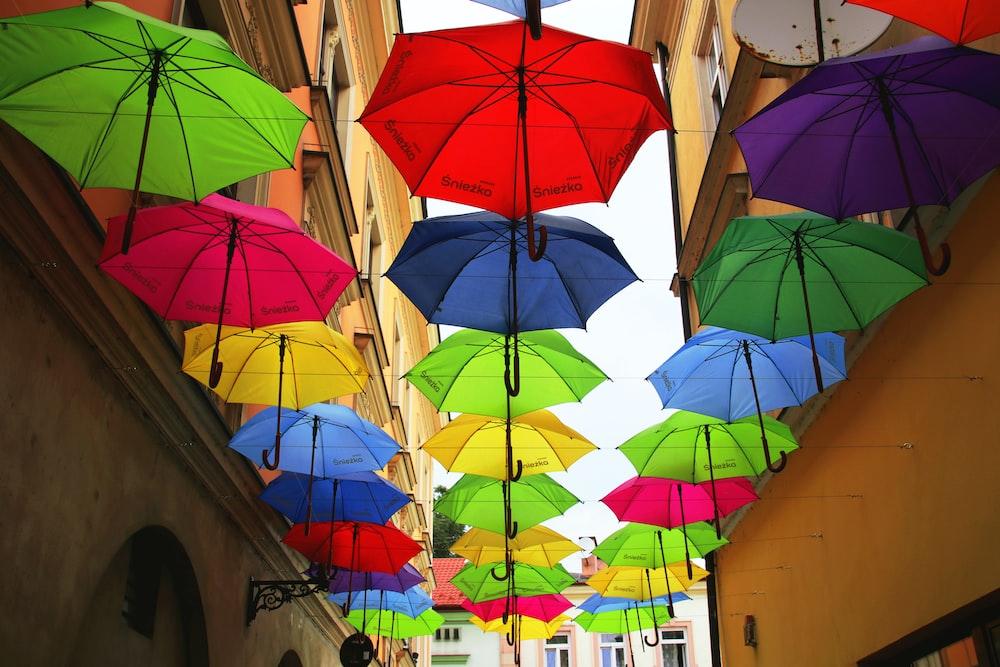 hung assorted-color umbrella lot