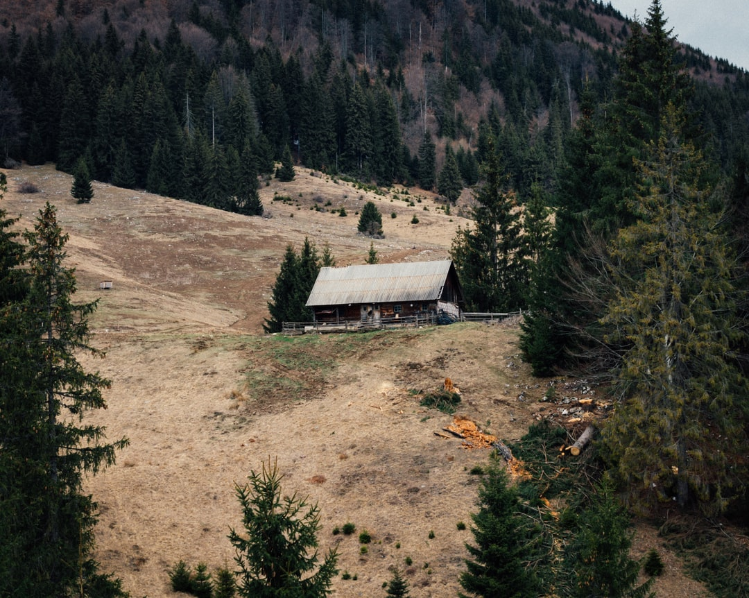 Old cabin in the middle of the woods located in the Piatra Craiului Mountains.