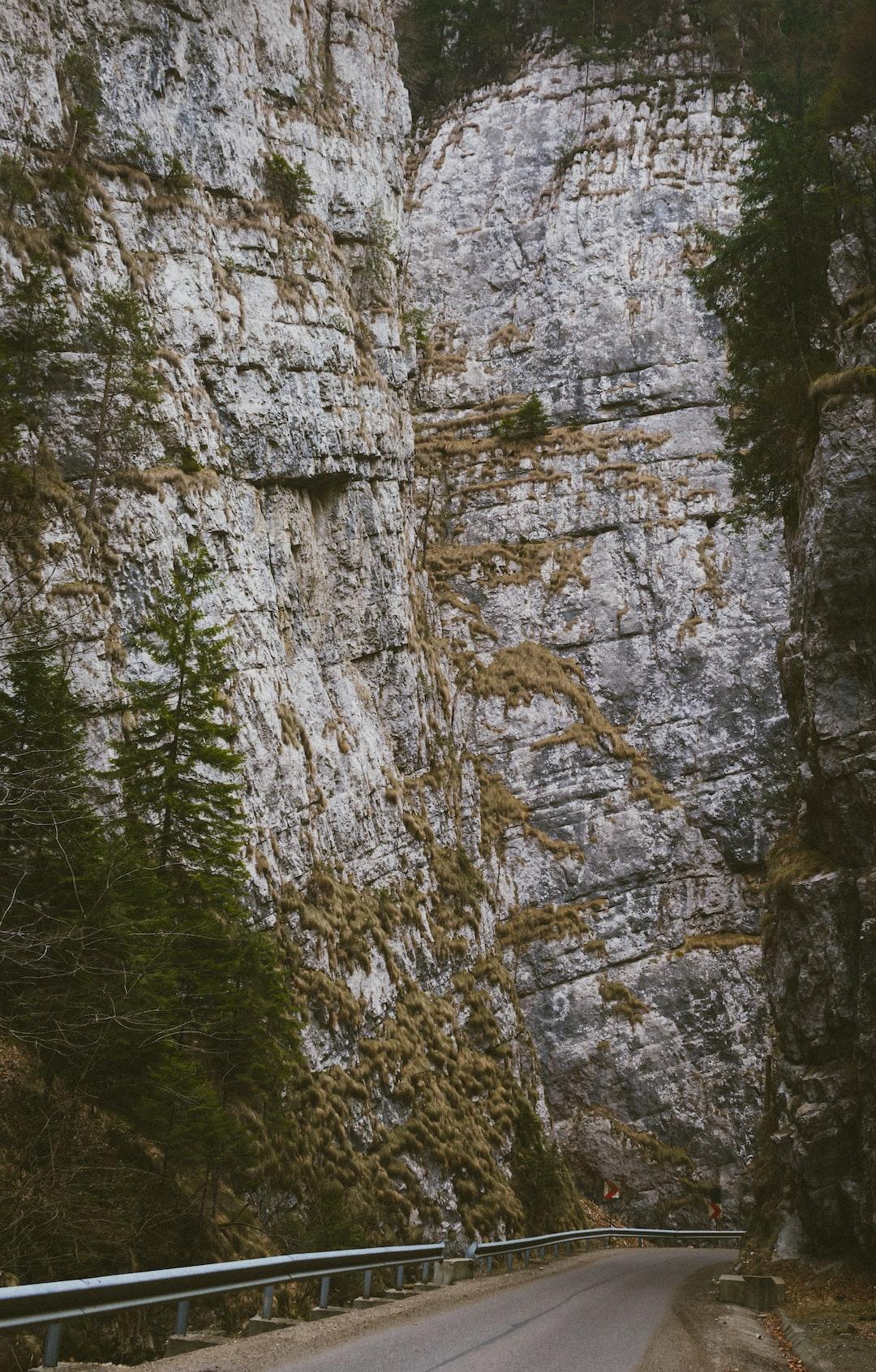 The road that rises among the high and steep rocks in Dambovicioara.