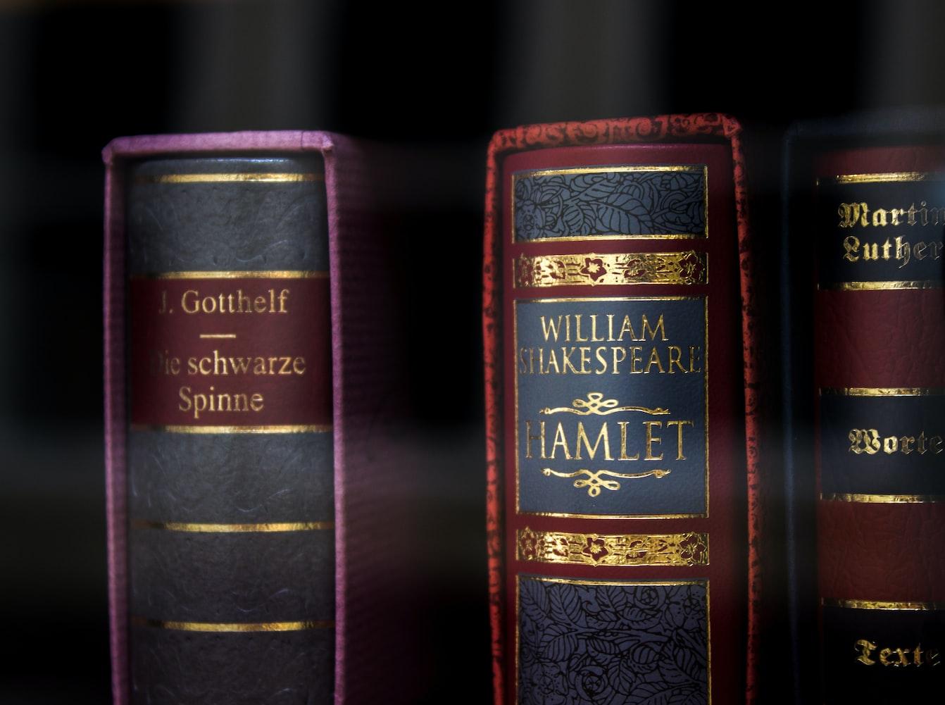 Libri Amleto