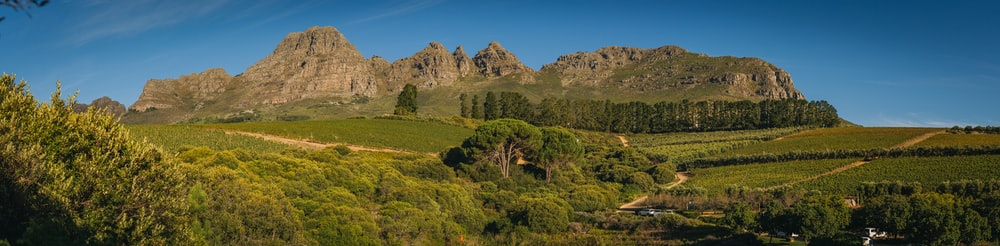 panorama photography of mountain