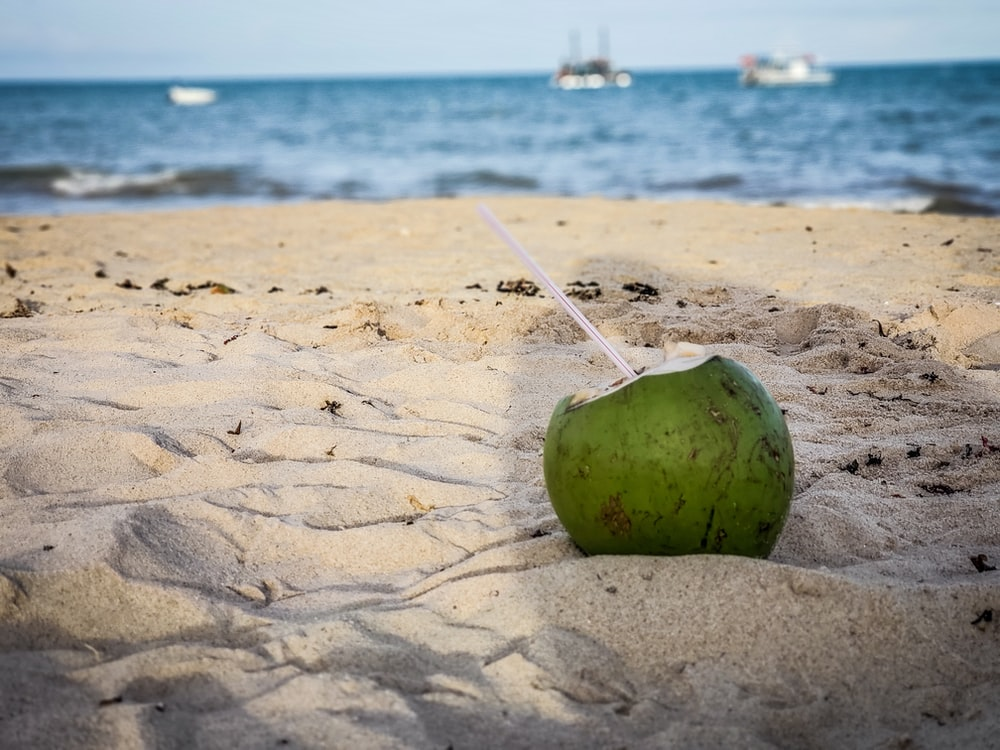 shallow focus photo of coconut on sand