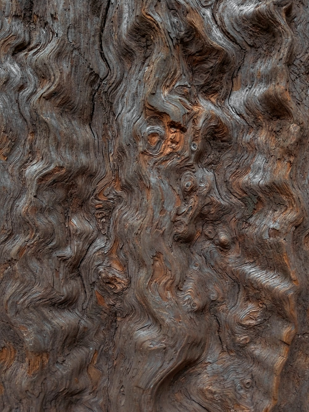 close-up photography of brown wooden wall