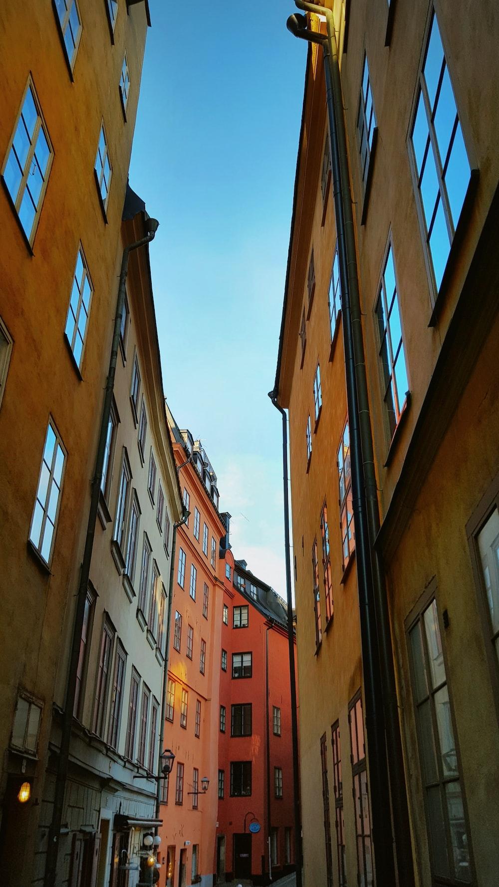 narrow pathway between buildings