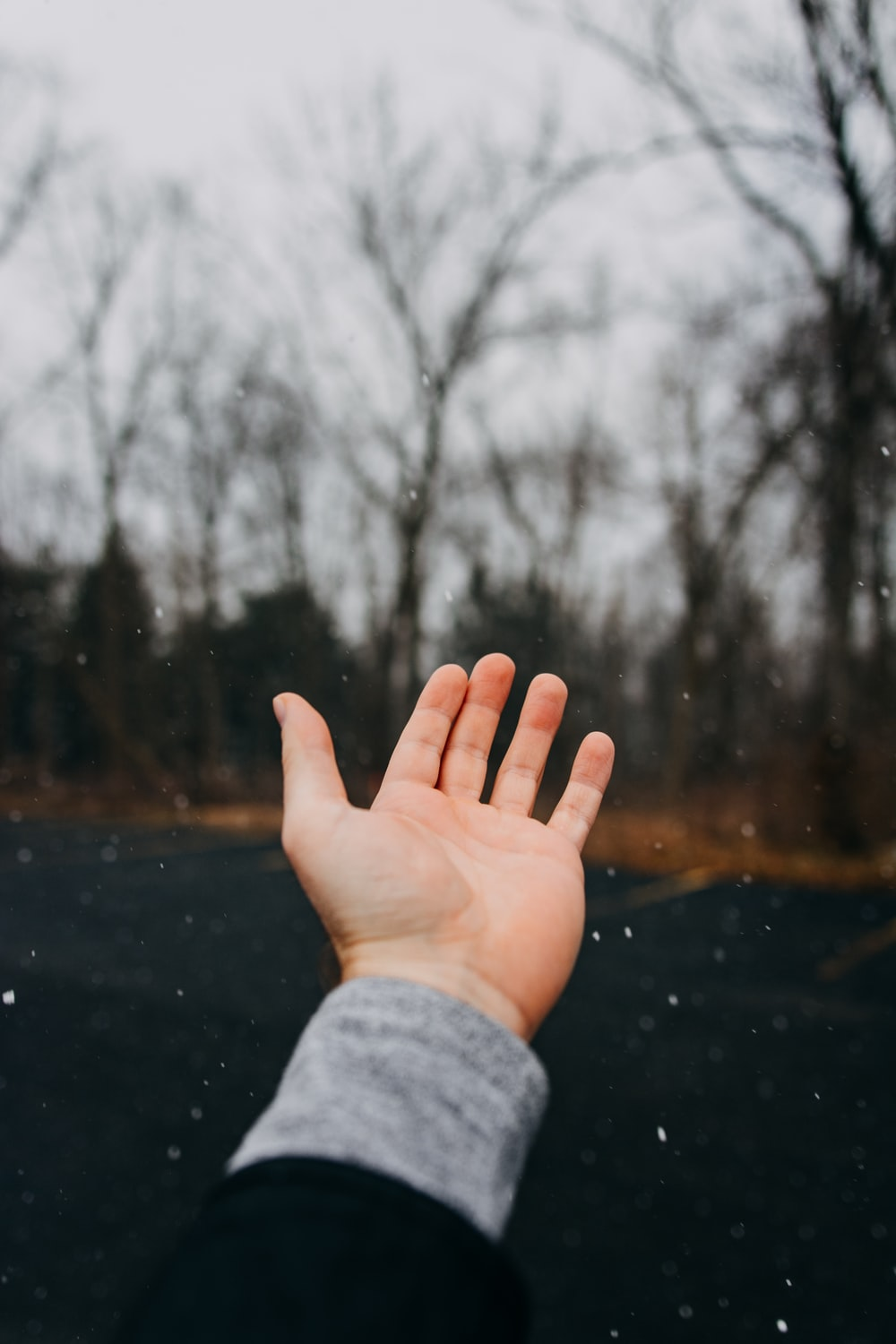 photo of left person's hand