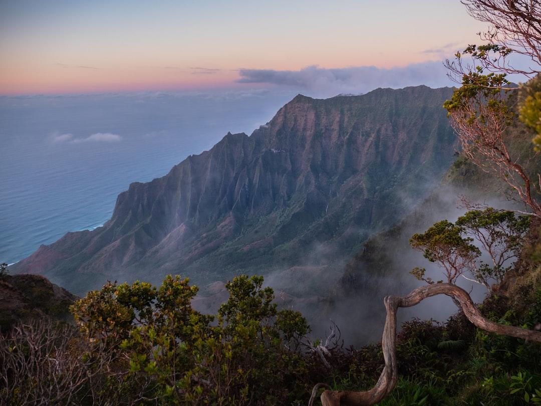 outdoors, nature, island, vacation, kauai, canyon, natural, hawaii, landscape, waimea, tourism, scenic, rock, clouds, destination, ecology, peaceful, green, sunlight, shadow, serene, tropical, united, park, vibrant, dirt, red, aerial, scene, shade, colorful, tranquil, panorama, lush, warm, kalalau valley, panoramic, usa, waimea canyon, photography, color image, worship, napali coast, beauty in nature, spring, range, hair