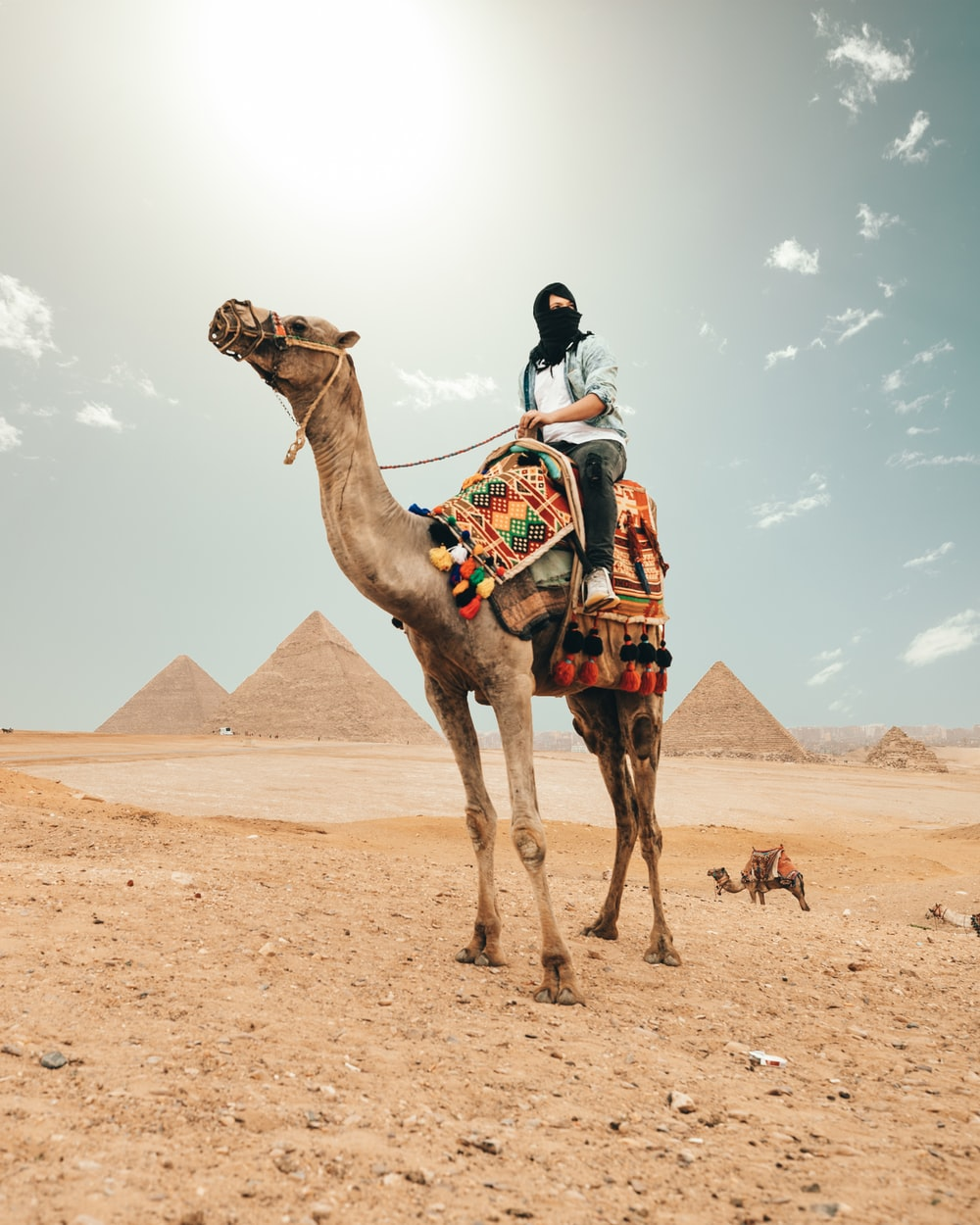 person riding camel
