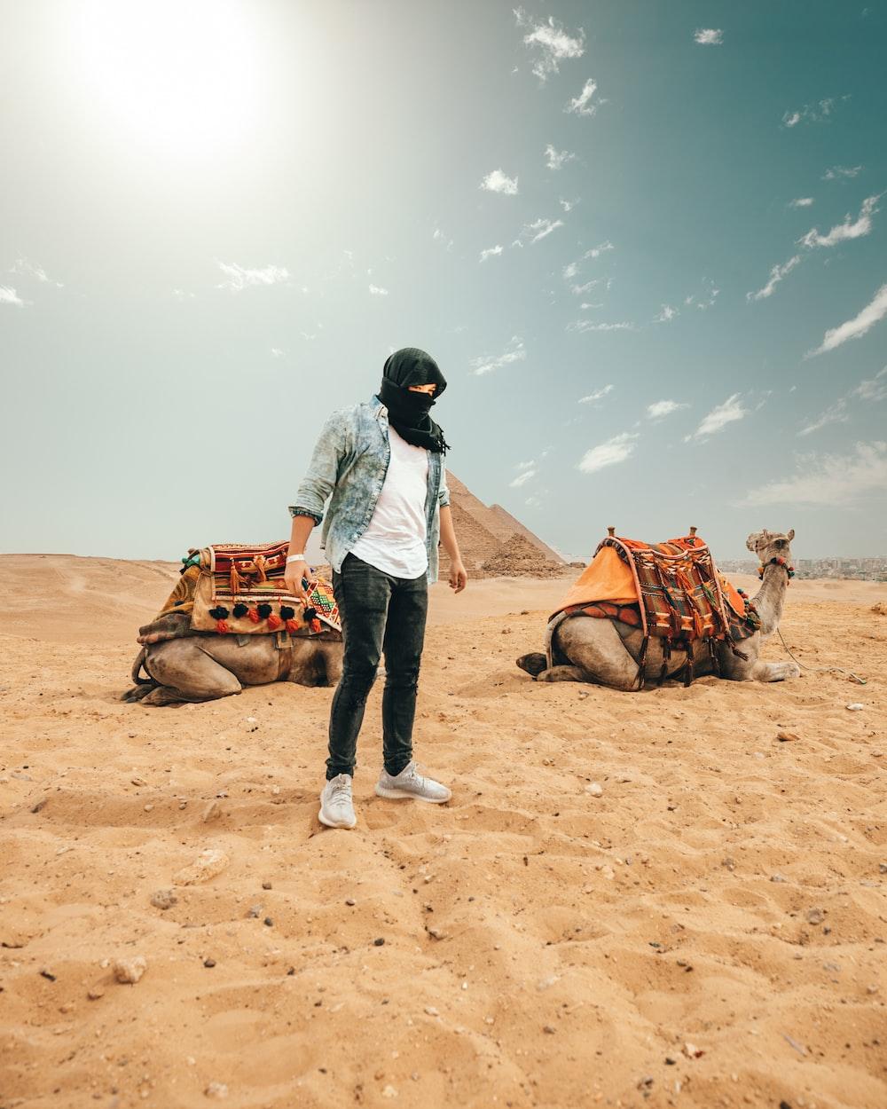 person standing on desert near resting camel