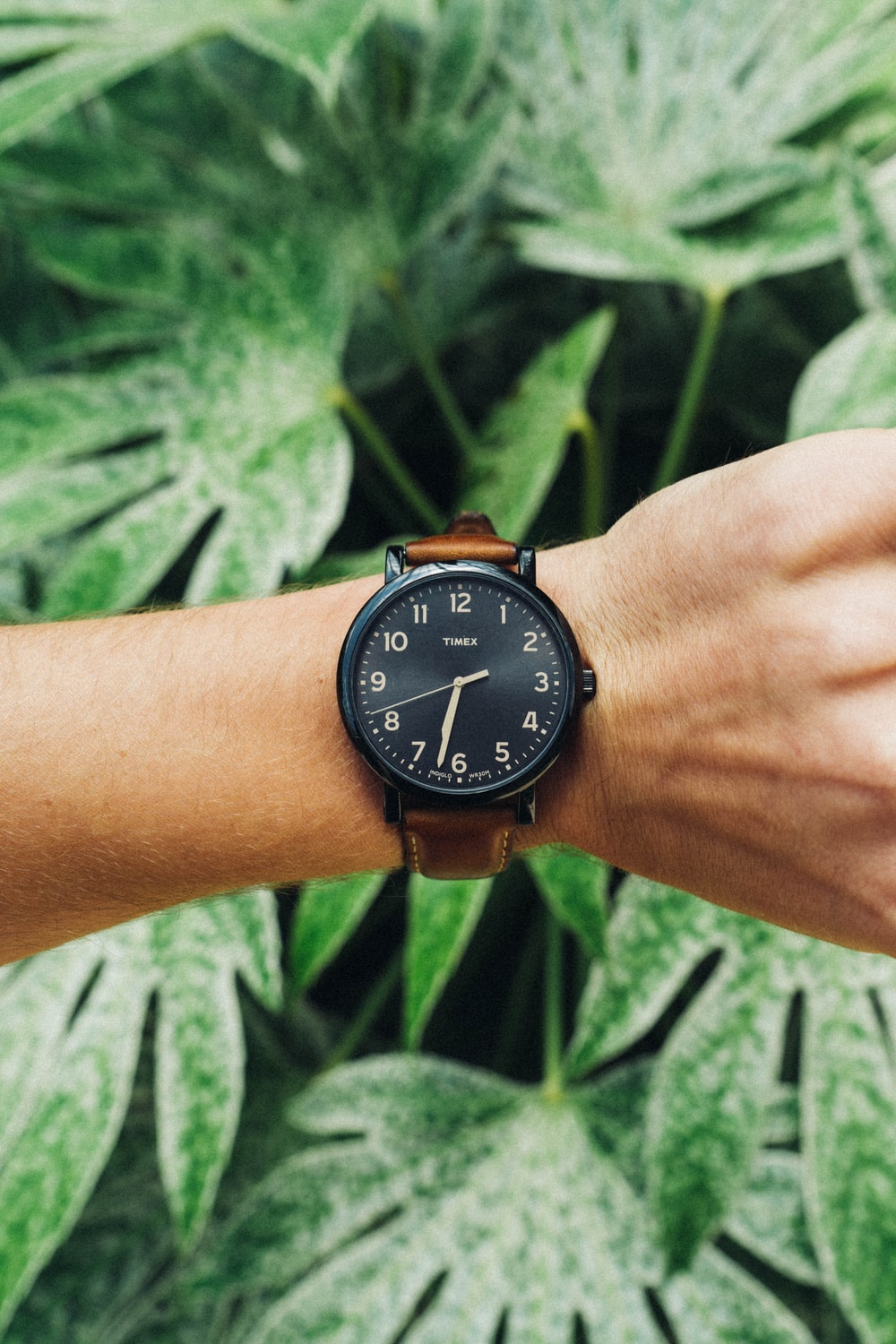 round black and brown analog watch