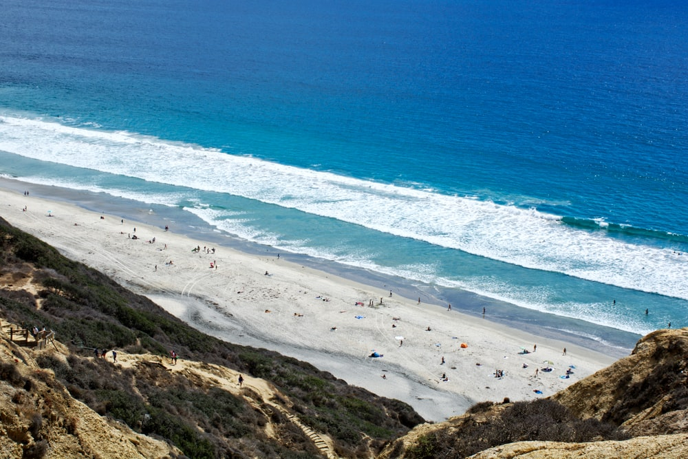 people on sand near seashore