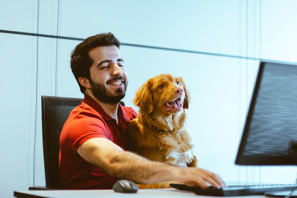 dog sitting on man's lap while using computer