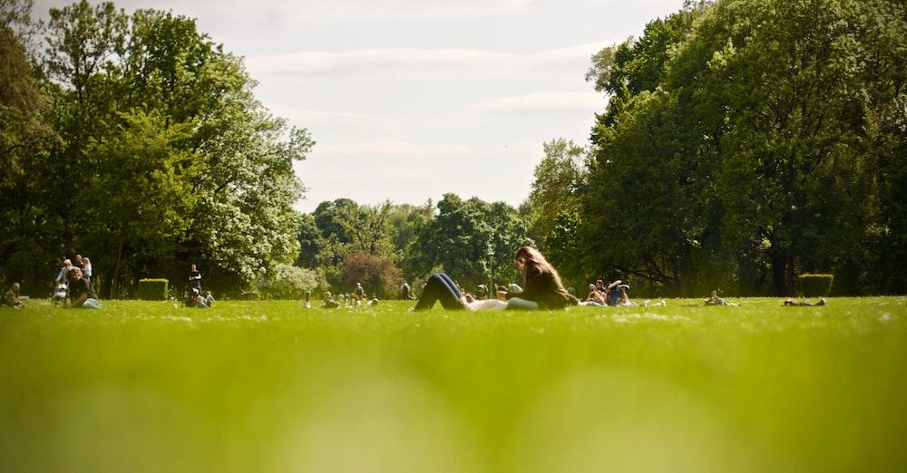 people on green field