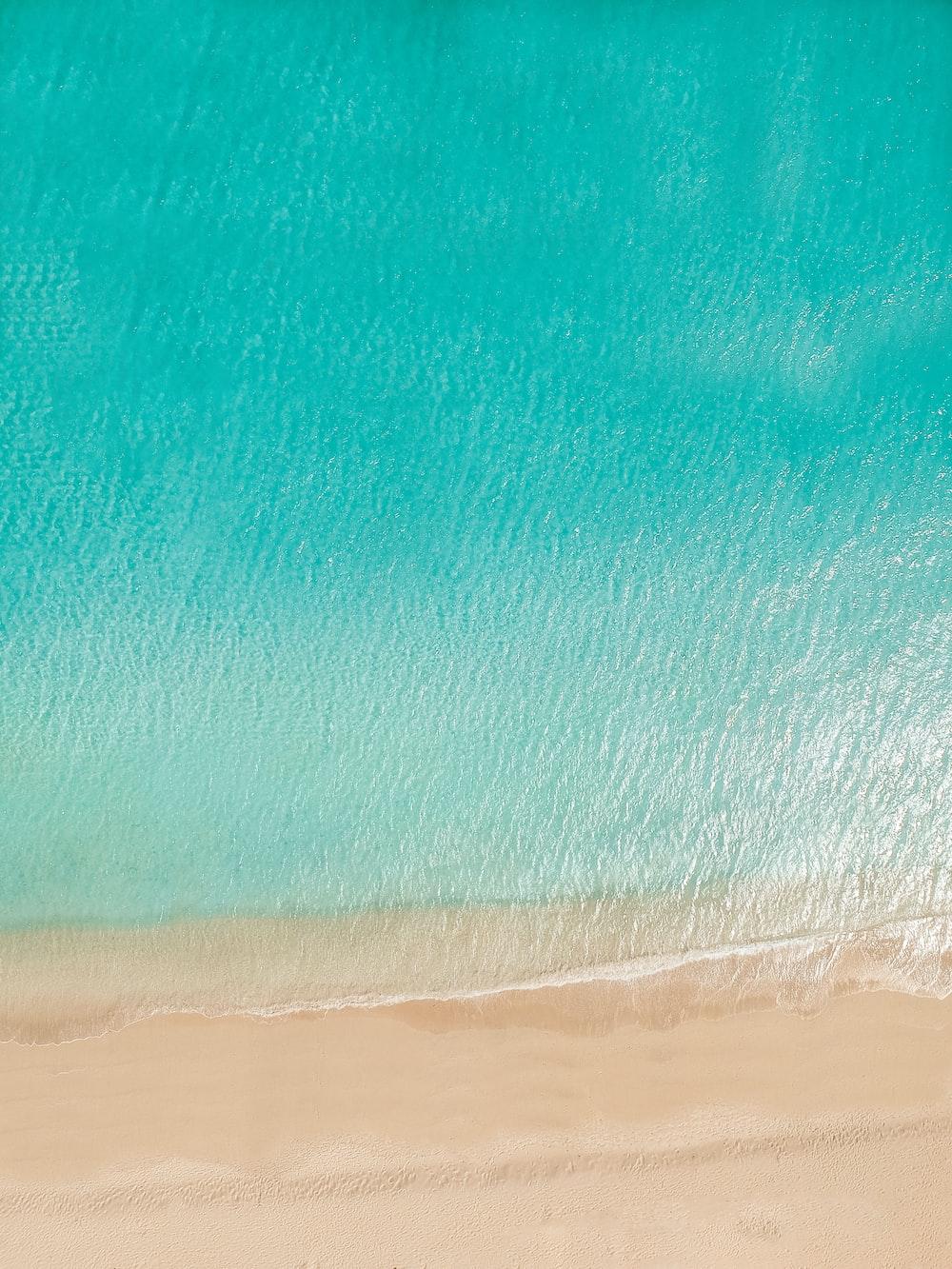blue body of water near shore