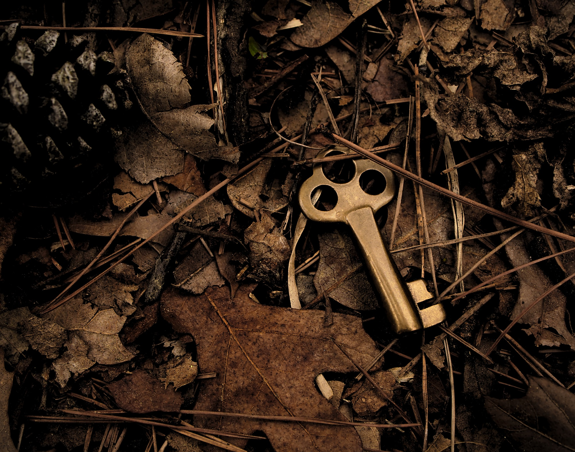 An old brass key dropped in the woods.