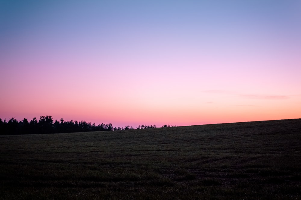 green open field under orange skies