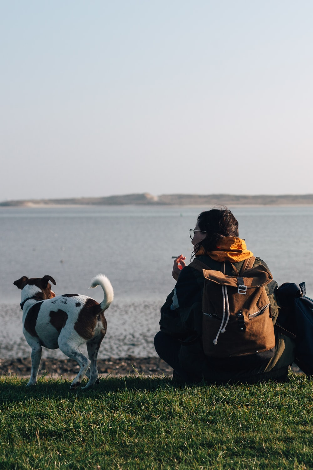person sitting on grass beside dog near body of water