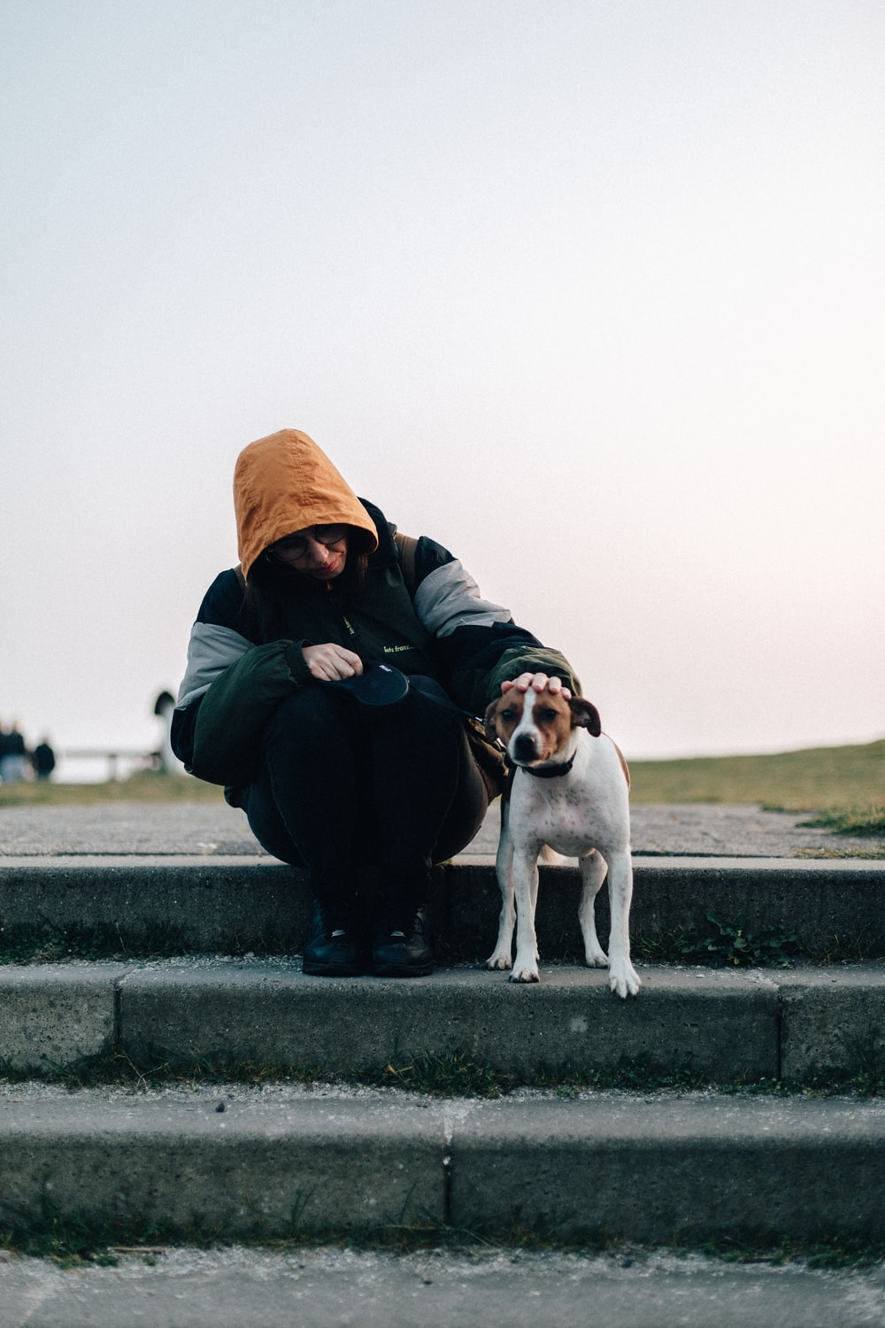 person sitting with dog on gray concrete stairs during daytime