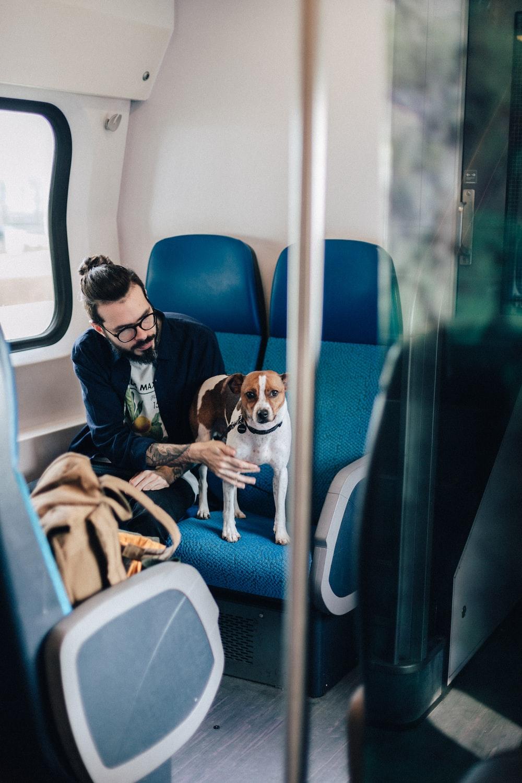 man sitting in train beside dog