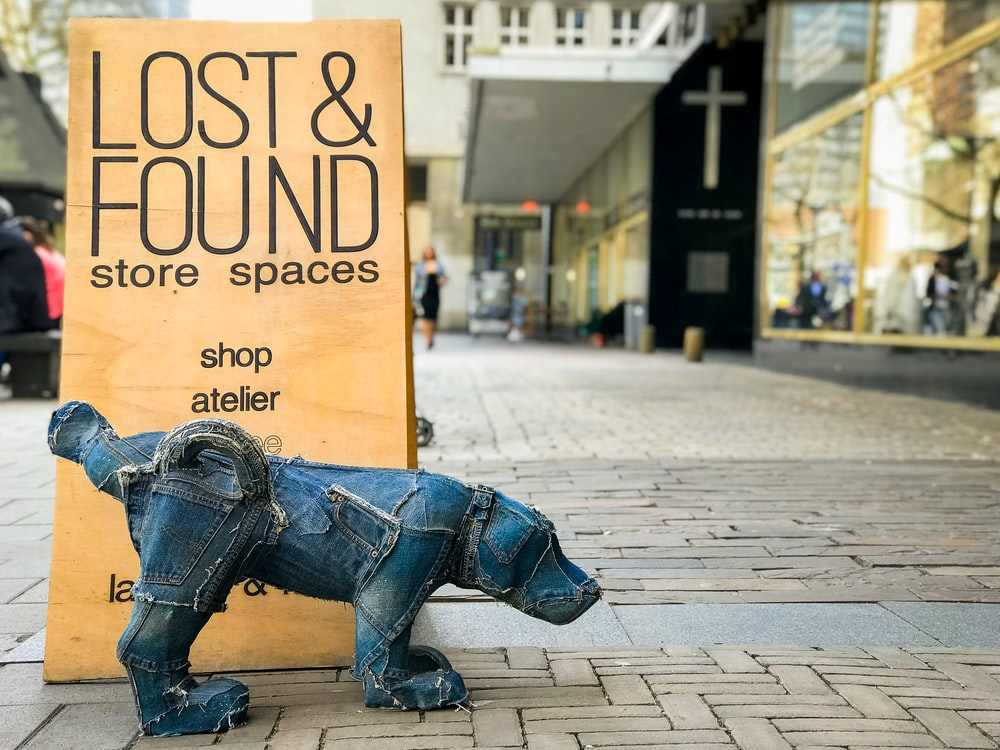blue dog statue at daytime