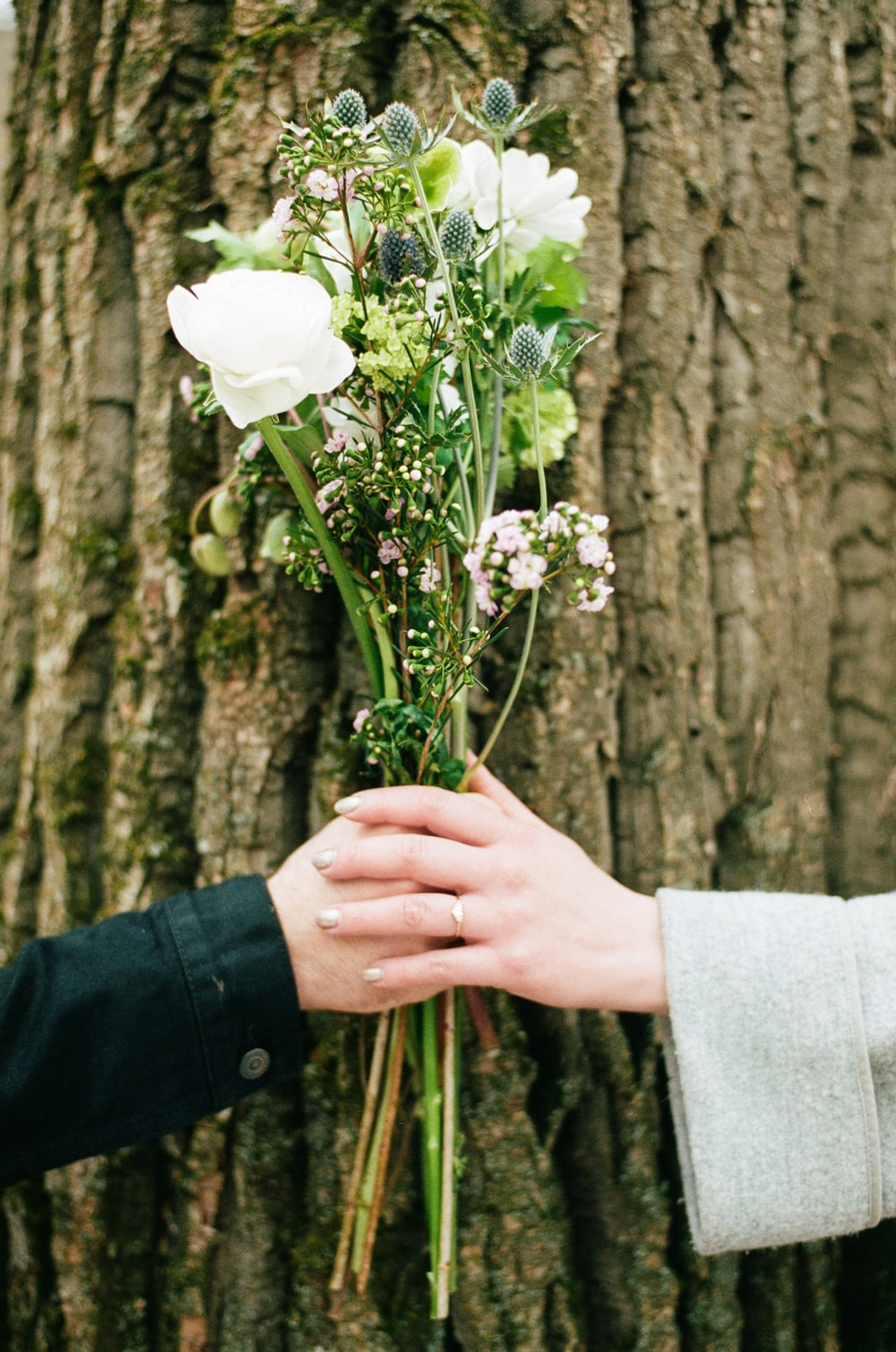 two person holding white rose flowers