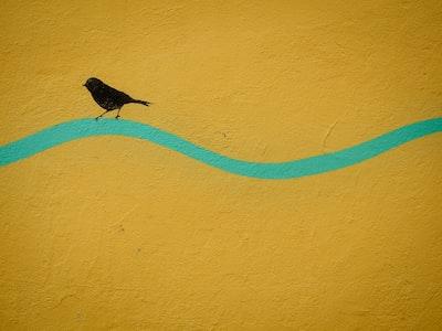 Padova painting of bird