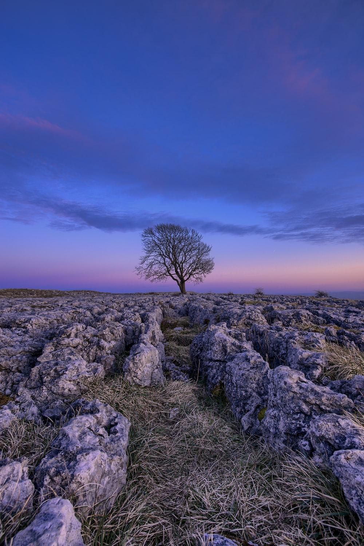 gray rocks during golden hour