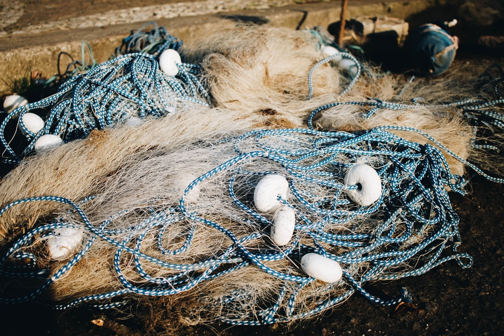 white and brown fish net