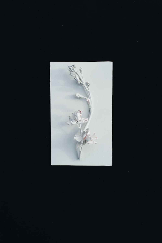white decorative floewr