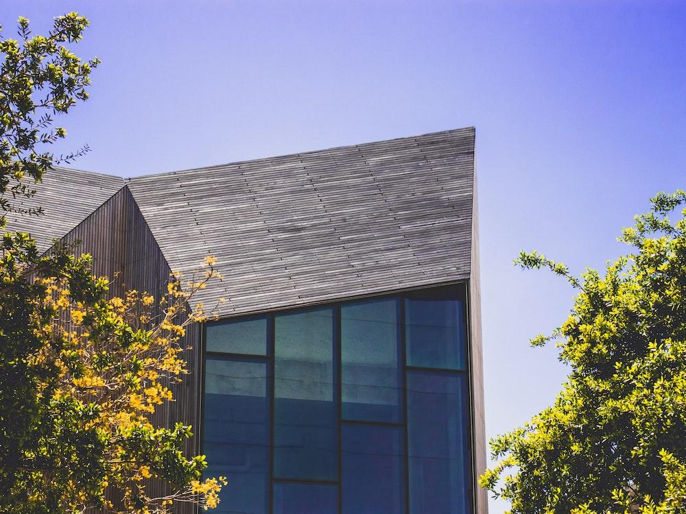 building beside green leaf trees