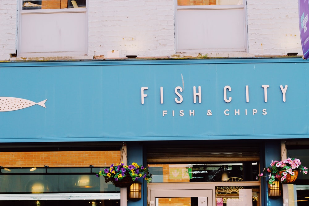 Fish City store front during daytime