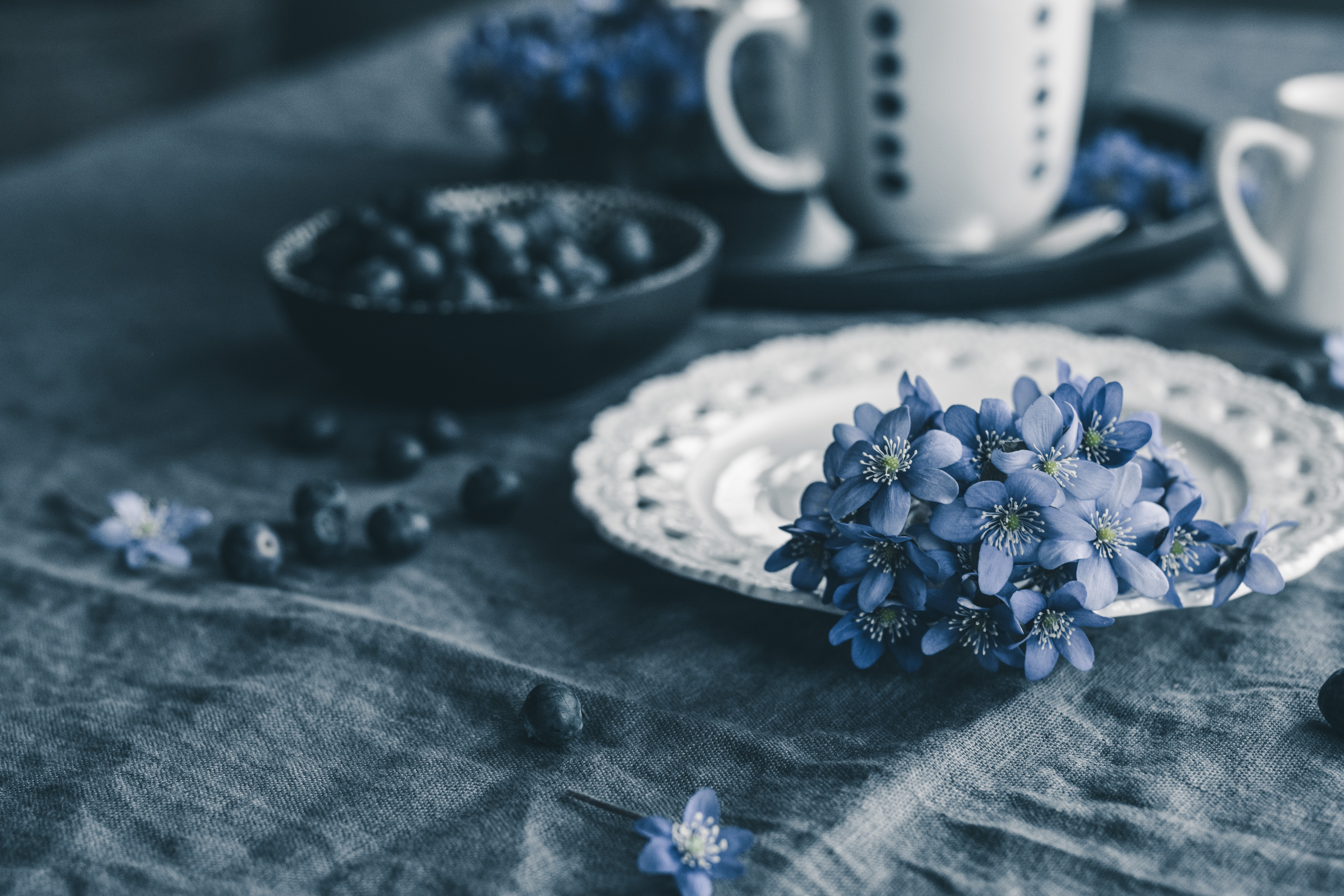 selective focus photo of blue flowers on white plate