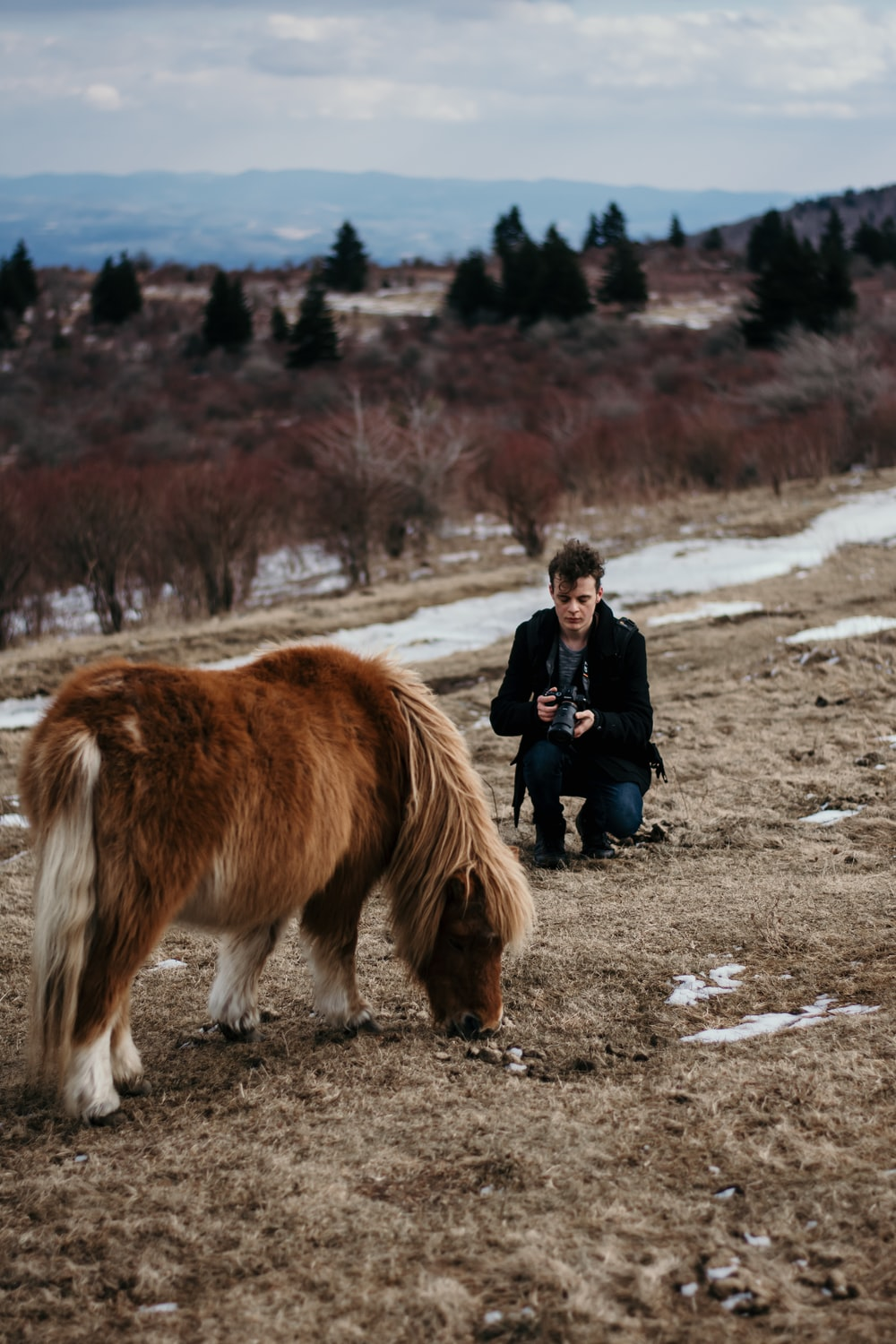 person in front of pony during daytime