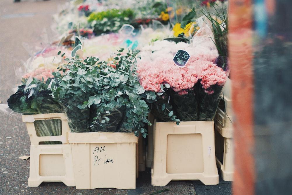 assorted-color flower arrangement in boxes