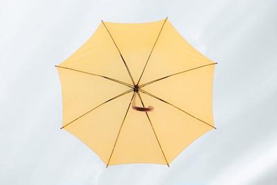 yellow umbrella umbrella teams background