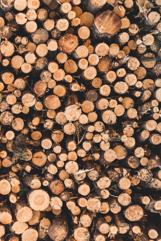 wood slab lot