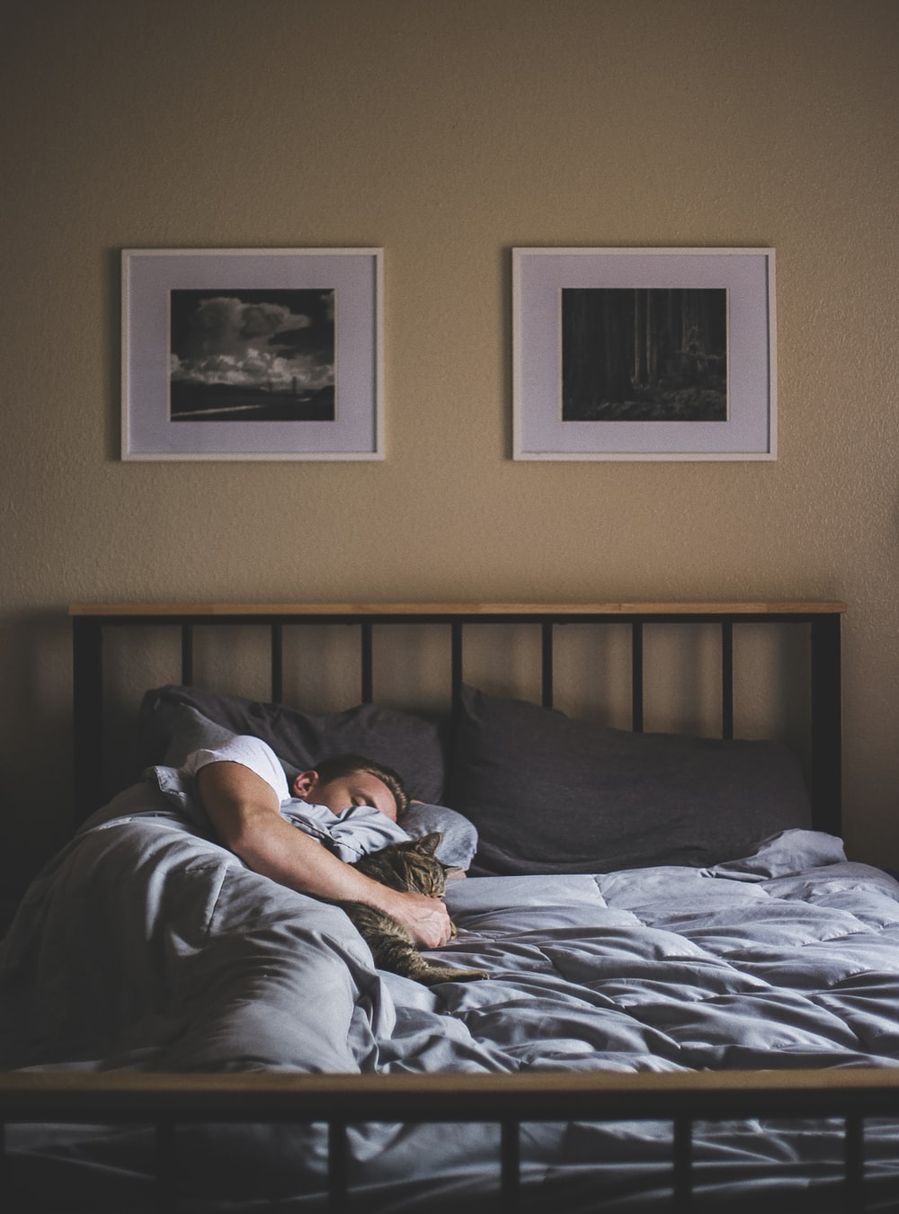 Importance Of Sleep You Should Know