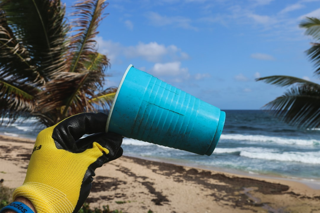 Use less plastic. A single use plastic cup found during a beach cleanup in The Caribbean. Follow on Instagram @wildlife_by_yuri