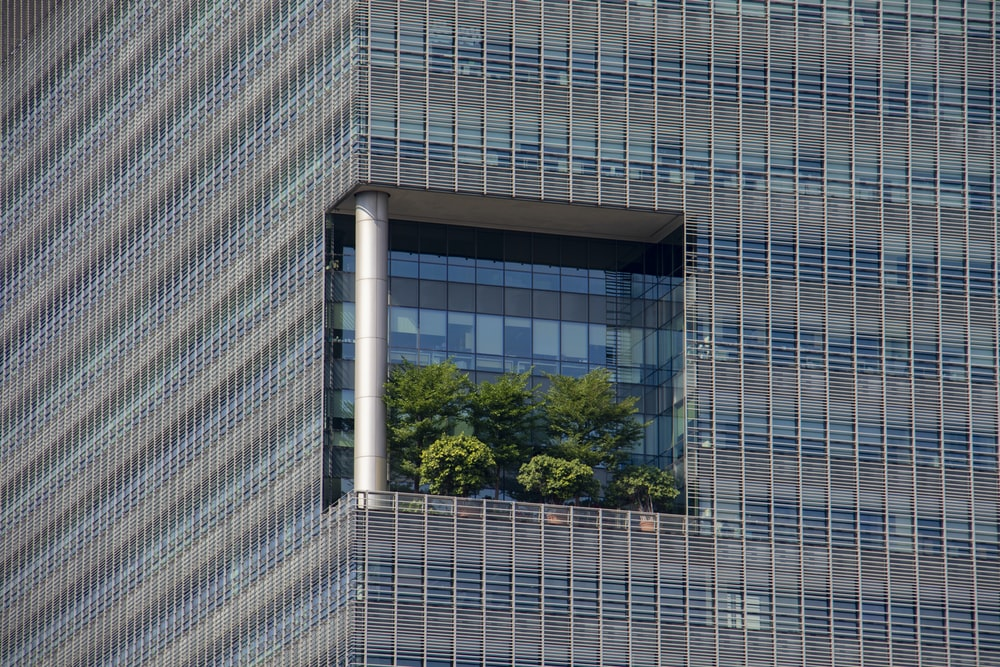 green-leafed plants on building balcony during daytime