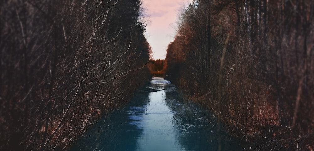 calm river view