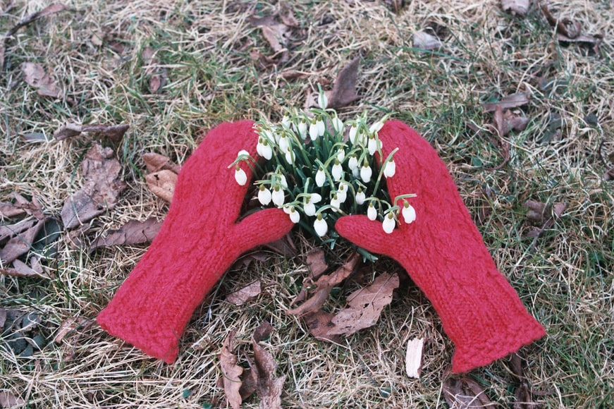 snowdrops and gloves