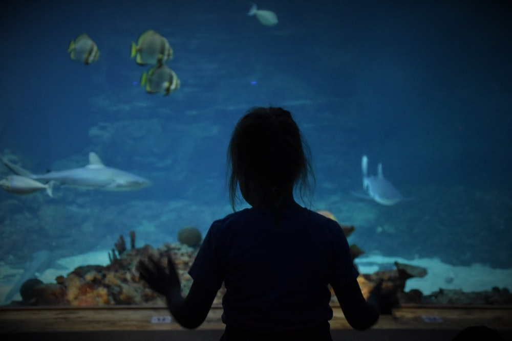 silhouette of woman by aquarium