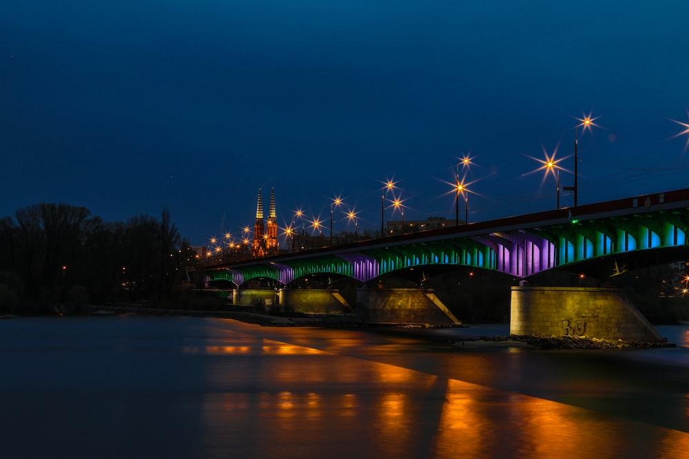 gray concrete bridge over body of water