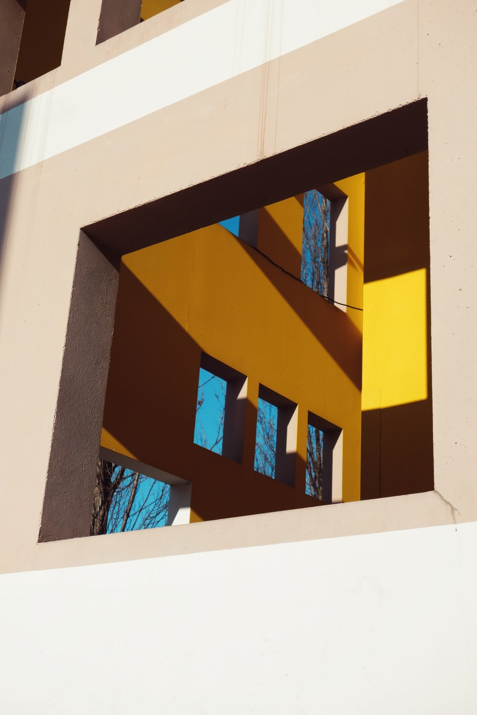 architectural photo of windows