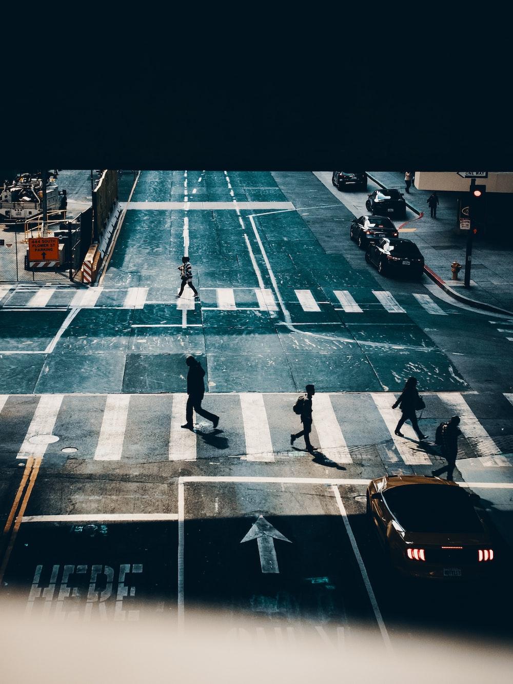 several person walking on pedestrian lane