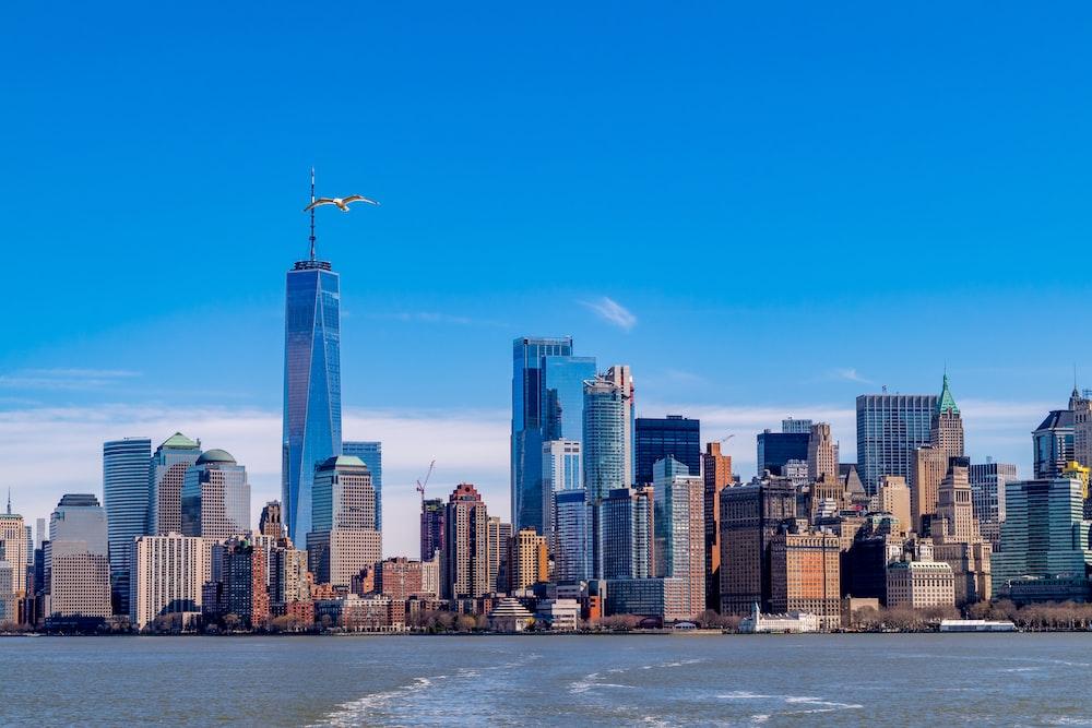 landscape of New York City