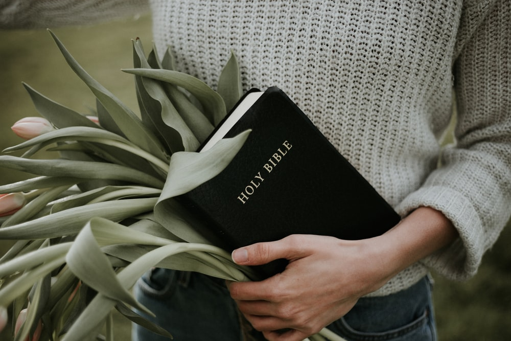 person carrying Holy Bible and bunch of green leaves