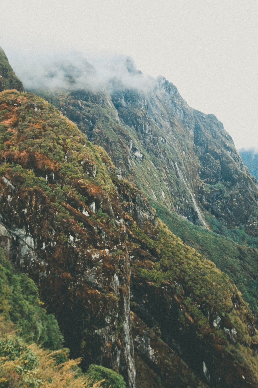 green trees on mountains