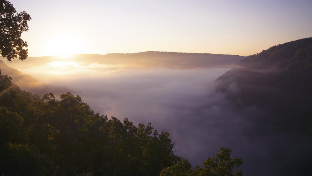 mountain covered with fogs view