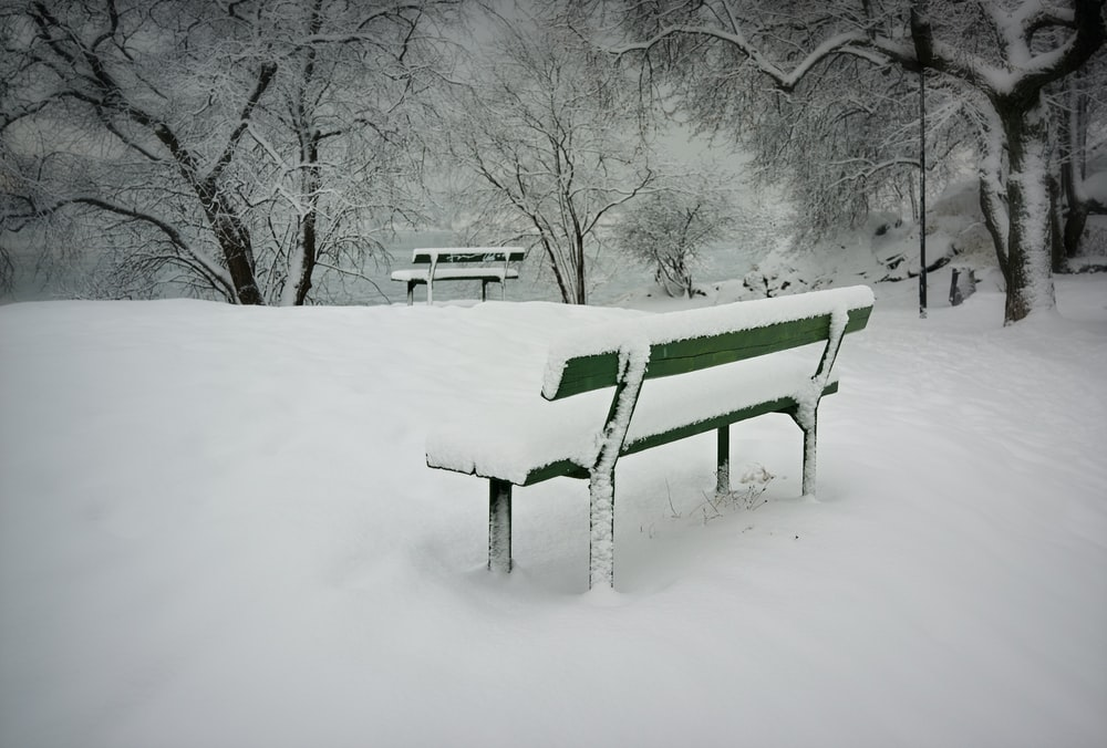 green bench covered with snow